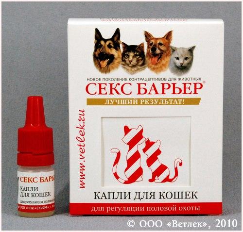 Секс барьер для кошек. Не все котоводы одобряют операцию по стерилизации к